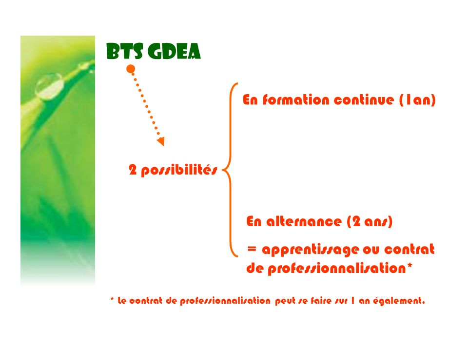 BTS GDEA En formation continue (1an) 2 possibilités