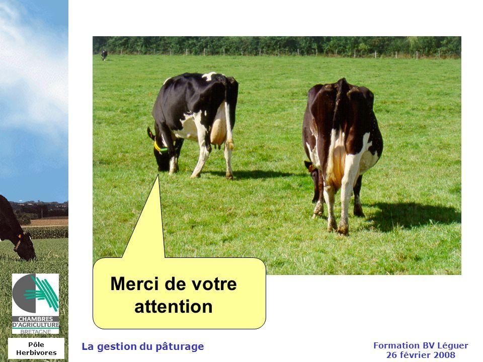 Merci de votre attention Formation BV Léguer 26 février 2008
