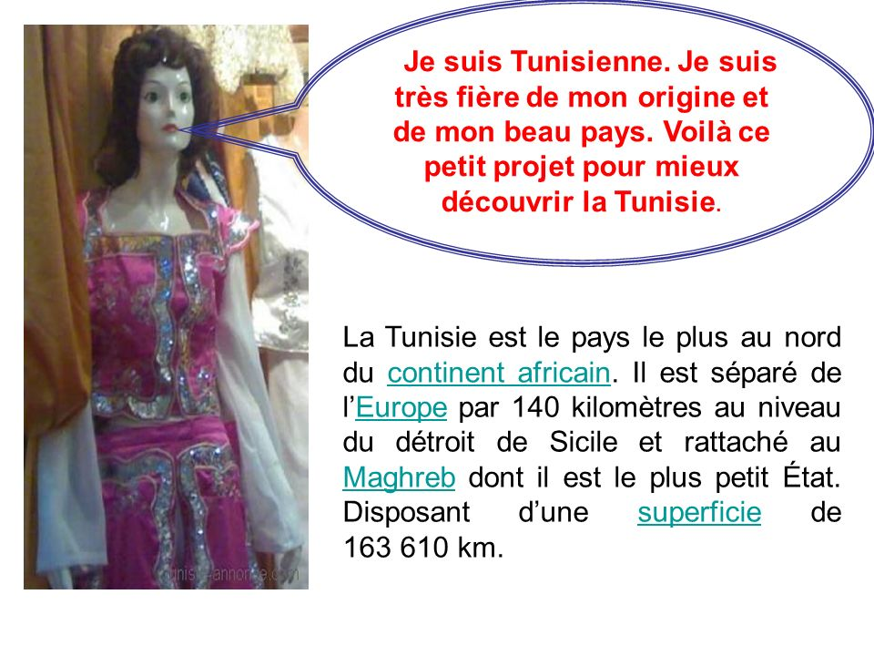 Je suis Tunisienne. Je suis très fière de mon origine et de mon beau pays. Voilà ce petit projet pour mieux découvrir la Tunisie.