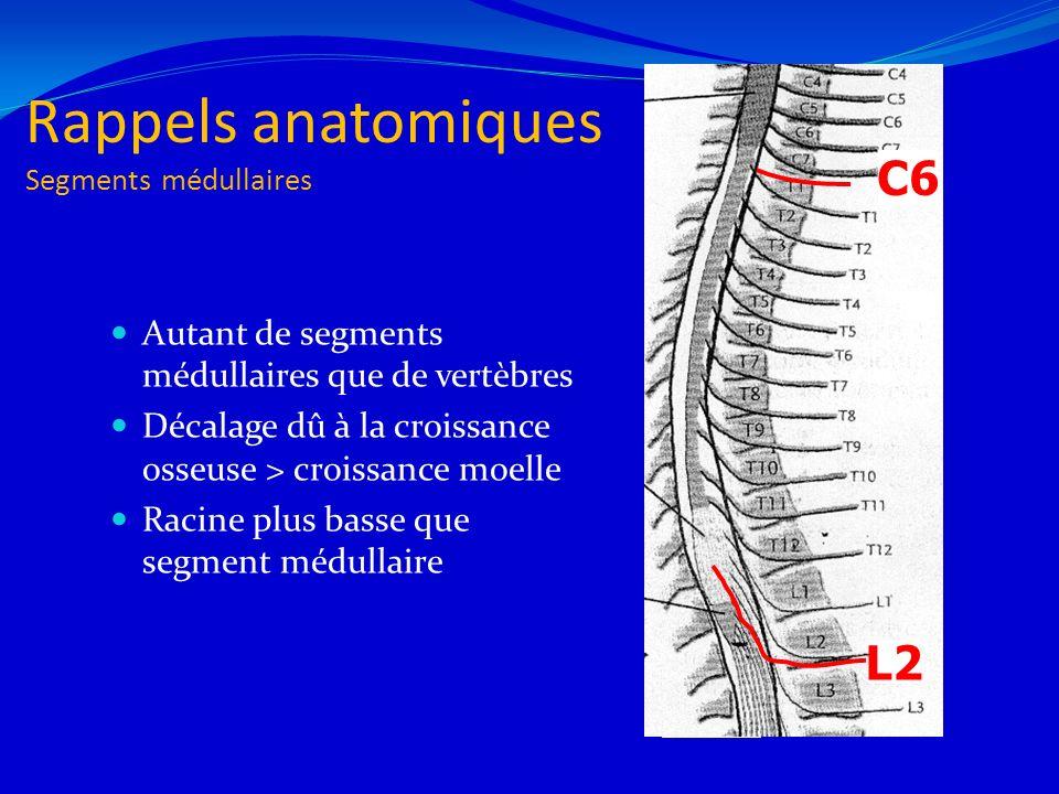 Rappels anatomiques Segments médullaires