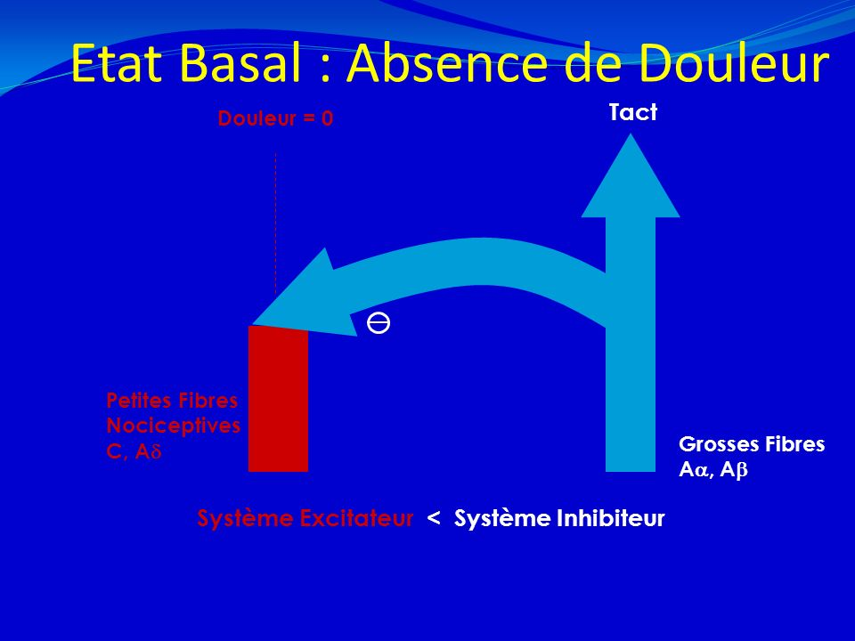 Etat Basal : Absence de Douleur