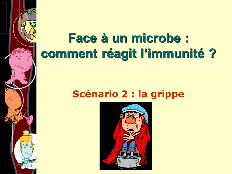 Face à un microbe : comment réagit l'immunité