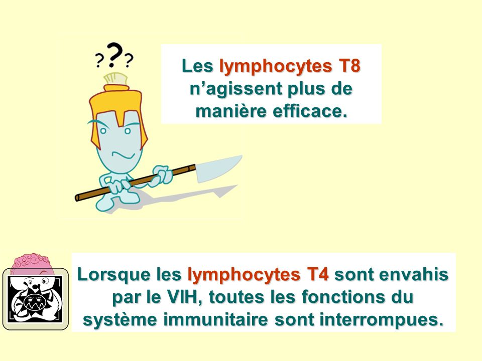 Les lymphocytes T8 n'agissent plus de manière efficace.