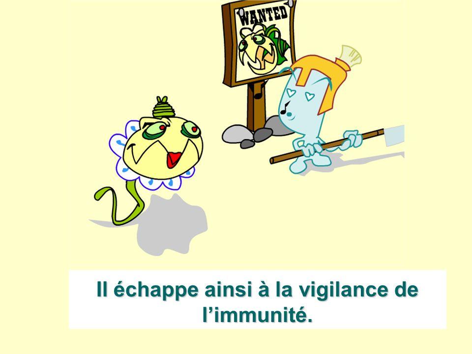 Il échappe ainsi à la vigilance de l'immunité.
