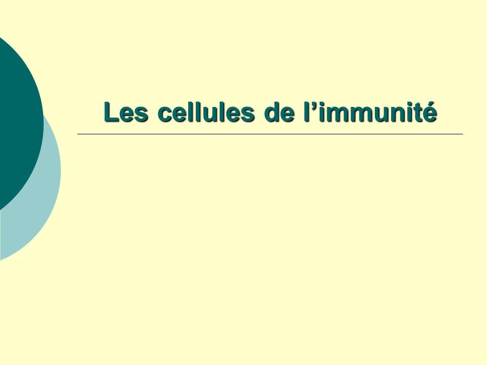 Les cellules de l'immunité