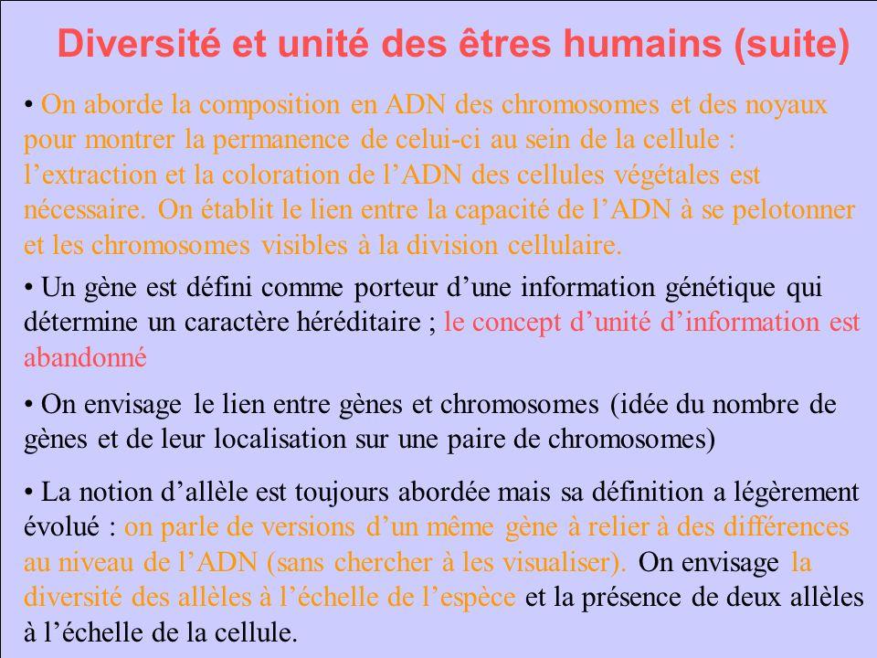 Diversité et unité des êtres humains (suite)