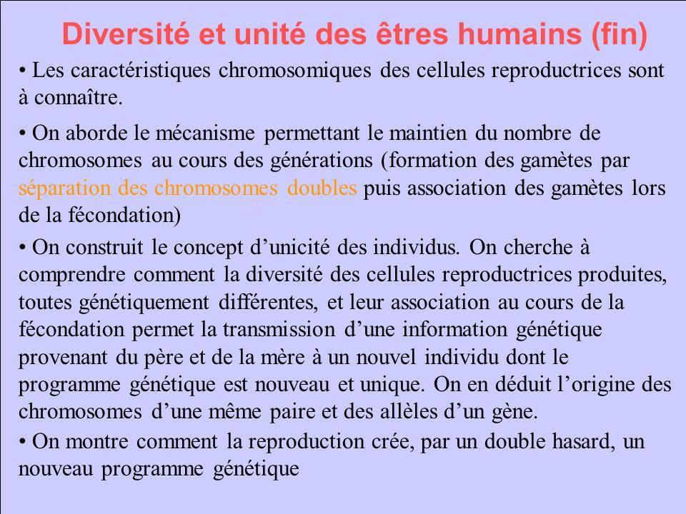 Diversité et unité des êtres humains (fin)