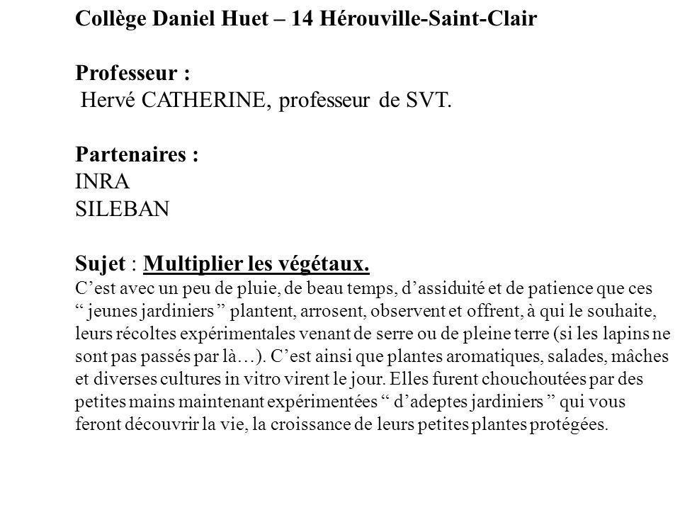 Collège Daniel Huet – 14 Hérouville-Saint-Clair Professeur :