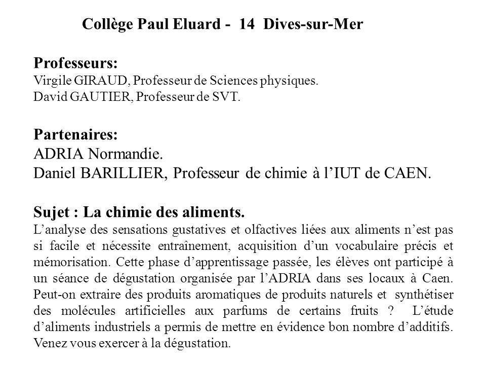 Collège Paul Eluard - 14 Dives-sur-Mer Professeurs: