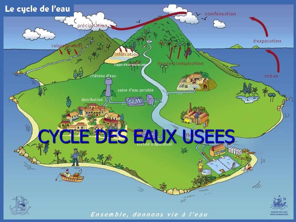 CYCLE DES EAUX USEES CYCLE DES EAUX USEES
