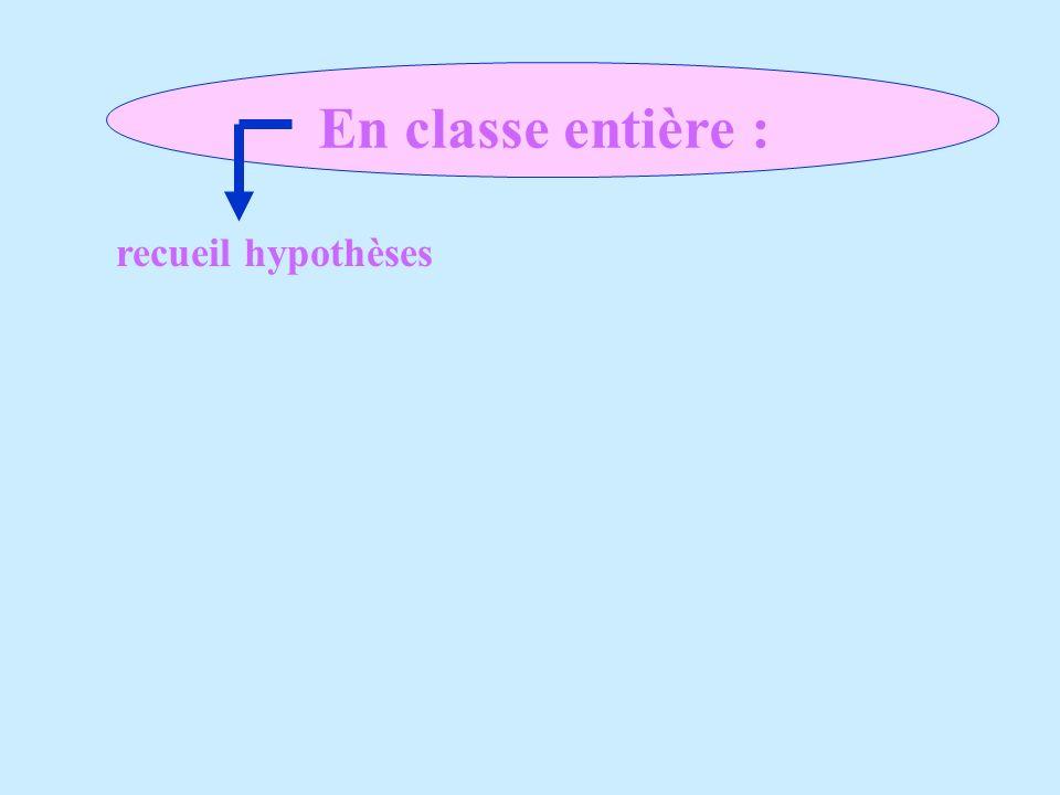 En classe entière : recueil hypothèses