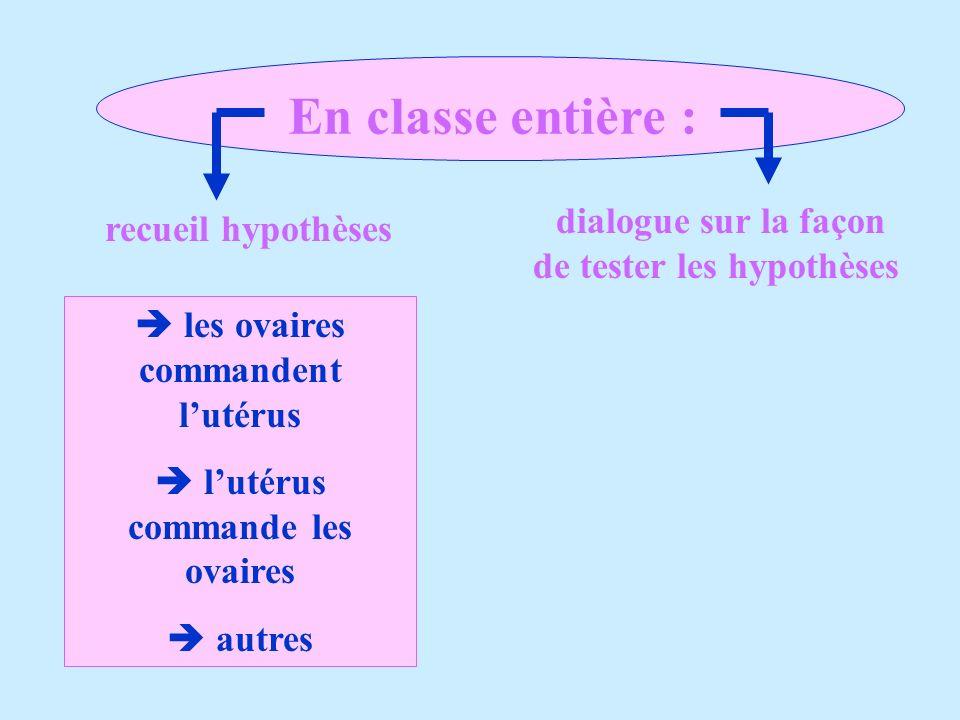 En classe entière : dialogue sur la façon de tester les hypothèses