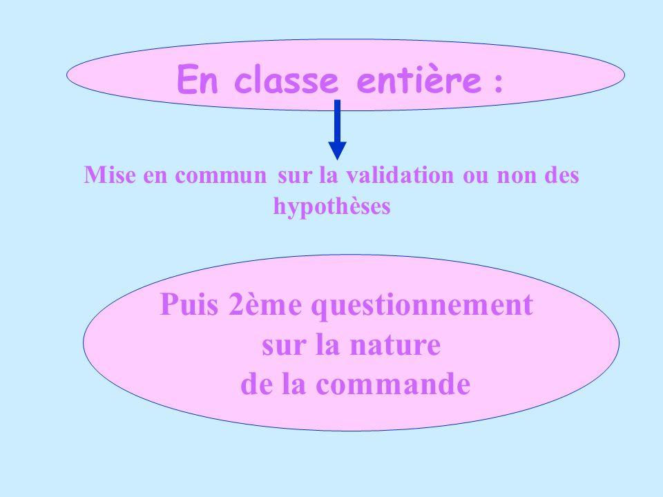 En classe entière : Puis 2ème questionnement sur la nature