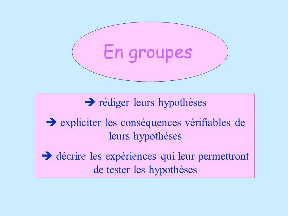 En groupes  rédiger leurs hypothèses