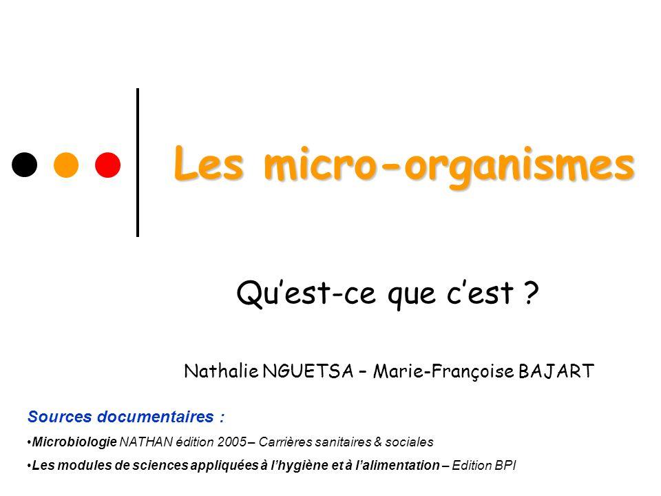 Qu'est-ce que c'est Nathalie NGUETSA – Marie-Françoise BAJART
