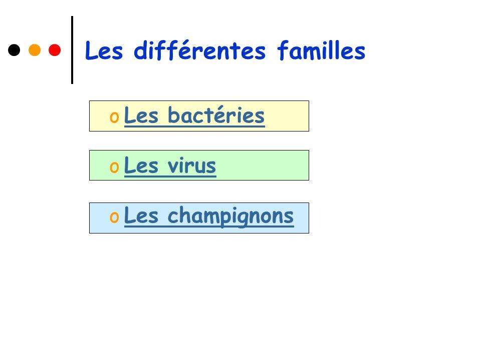Les différentes familles