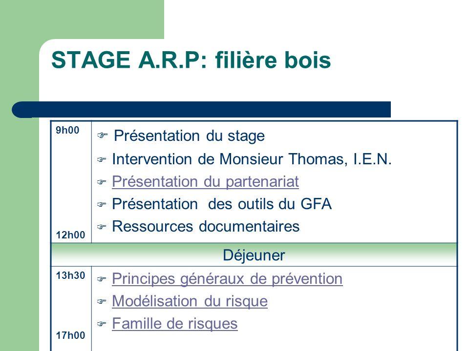 STAGE A.R.P: filière bois