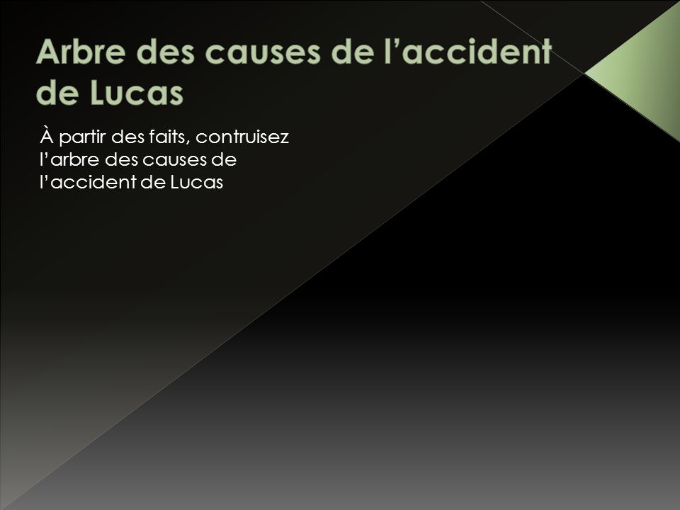 Arbre des causes de l'accident de Lucas
