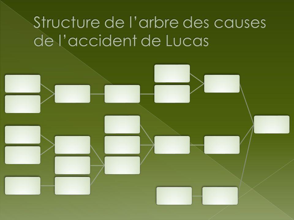 Structure de l'arbre des causes de l'accident de Lucas
