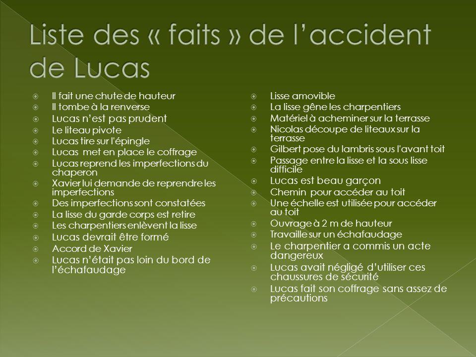 Liste des « faits » de l'accident de Lucas