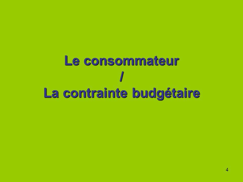 Le consommateur / La contrainte budgétaire