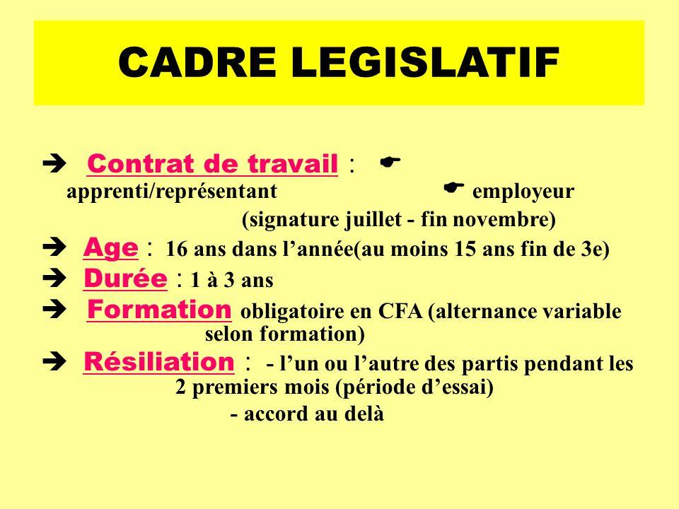 CADRE LEGISLATIF  Contrat de travail :  apprenti/représentant  employeur. (signature juillet - fin novembre)