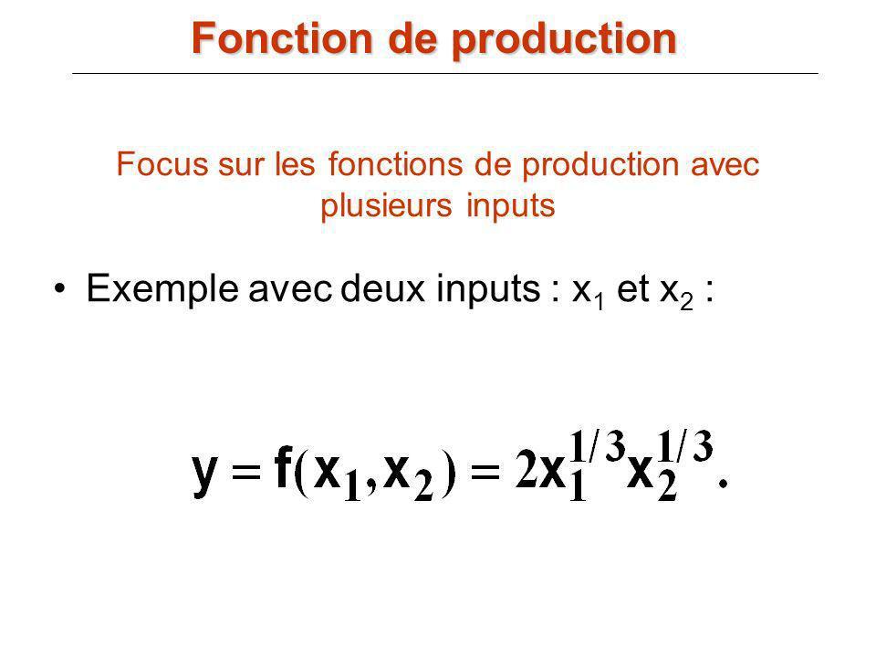 Focus sur les fonctions de production avec plusieurs inputs