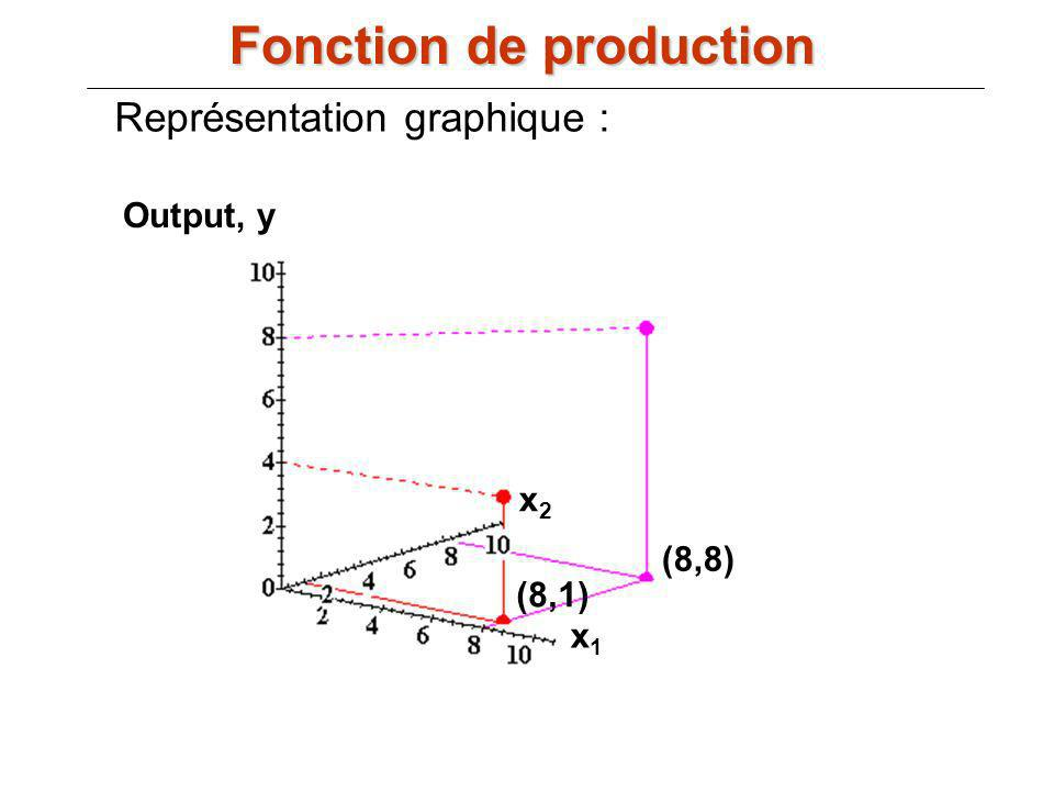 Fonction de production