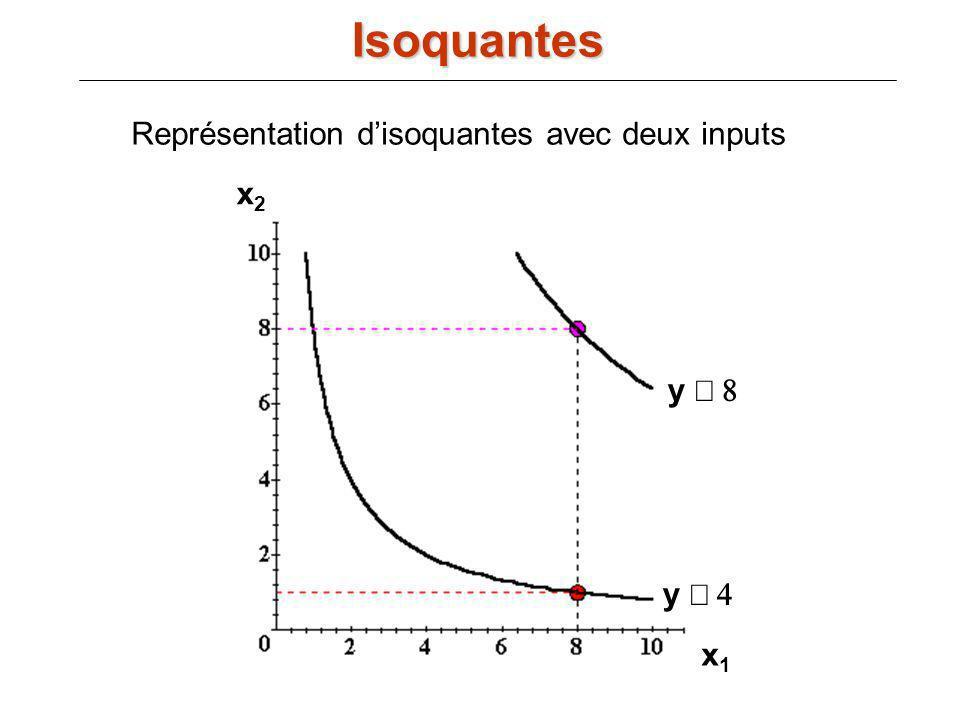 Représentation d'isoquantes avec deux inputs