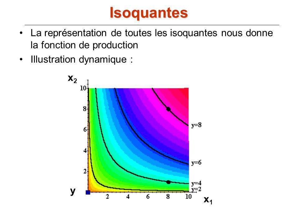 Isoquantes La représentation de toutes les isoquantes nous donne la fonction de production. Illustration dynamique :