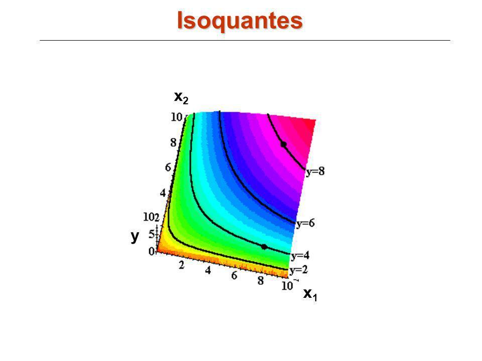 Isoquantes x2 y x1