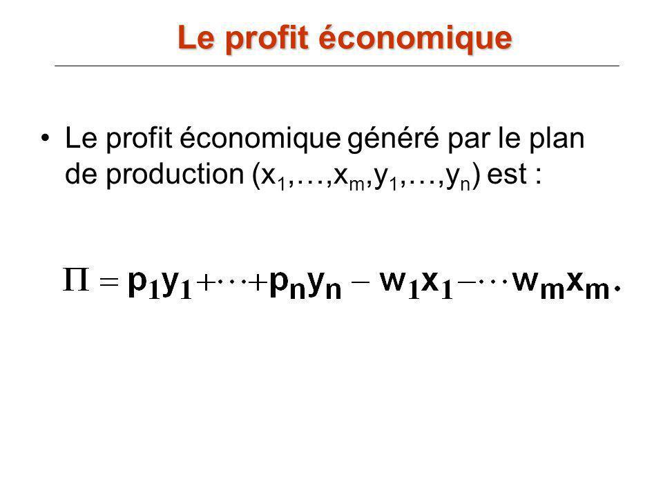 Le profit économique Le profit économique généré par le plan de production (x1,…,xm,y1,…,yn) est :