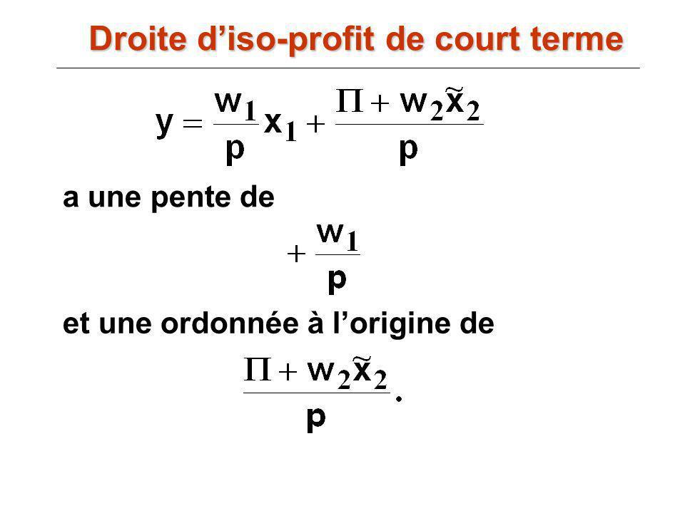 Droite d'iso-profit de court terme