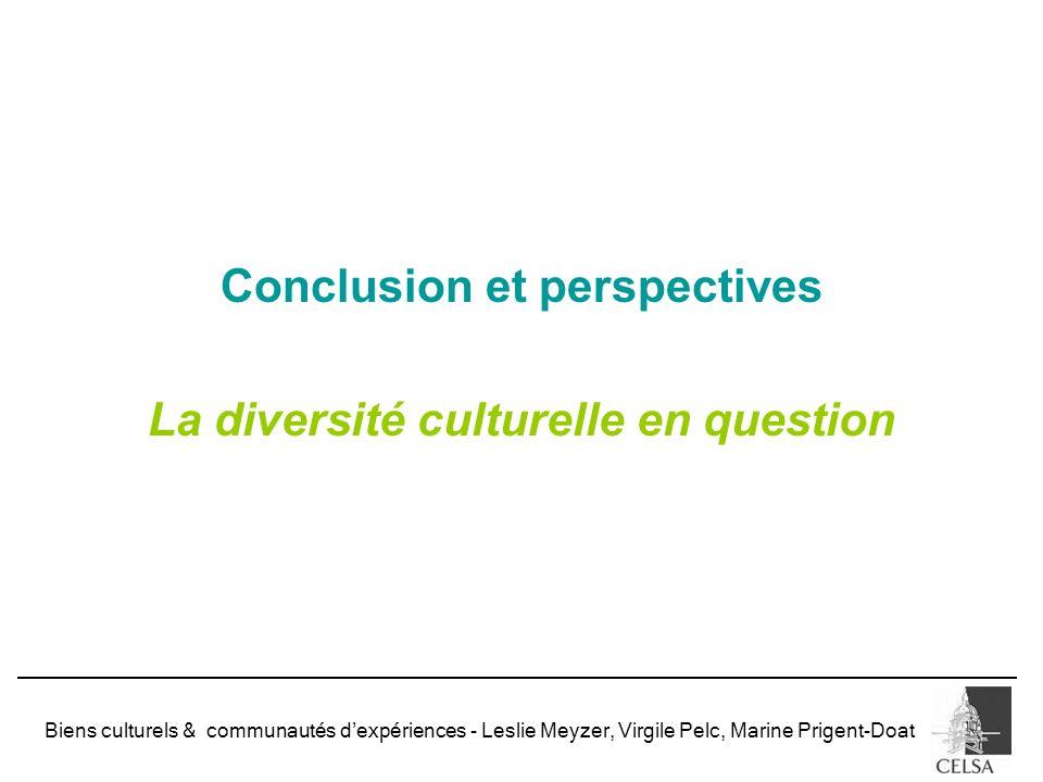Conclusion et perspectives La diversité culturelle en question