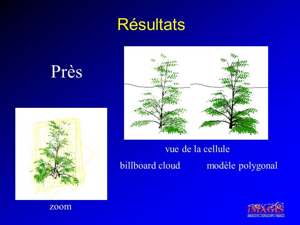 Résultats Près vue de la cellule billboard cloud modèle polygonal zoom
