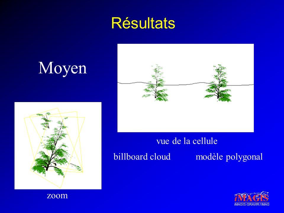 Moyen Résultats vue de la cellule billboard cloud modèle polygonal
