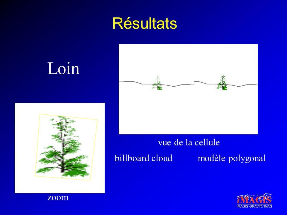 Résultats Loin vue de la cellule billboard cloud modèle polygonal zoom