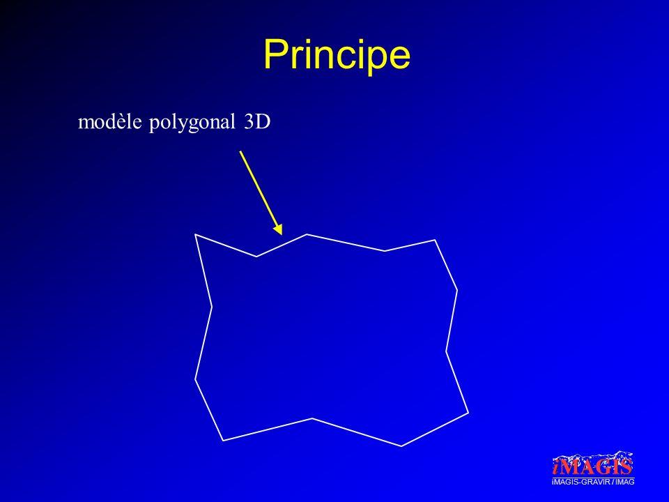 Principe modèle polygonal 3D