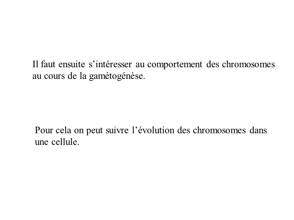 Il faut ensuite s'intéresser au comportement des chromosomes au cours de la gamétogénèse.