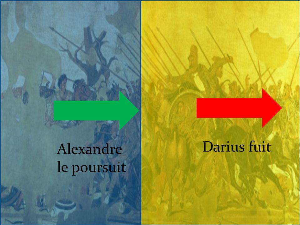 Darius fuit Alexandre le poursuit