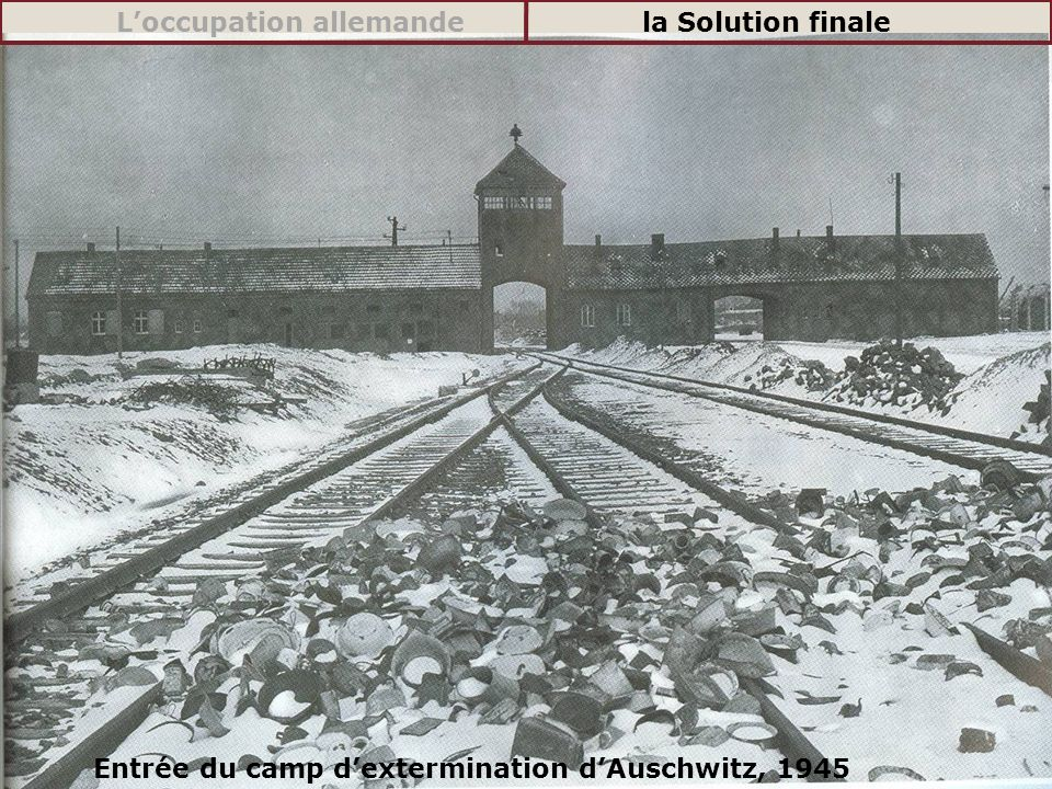 L'occupation allemande la Solution finale