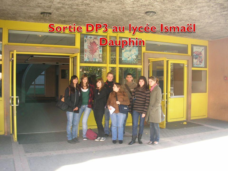 Sortie DP3 au lycée Ismaël Dauphin