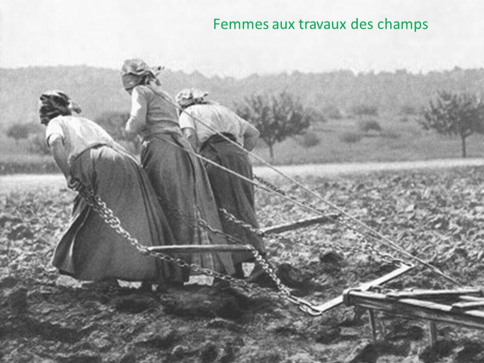 Femmes aux travaux des champs