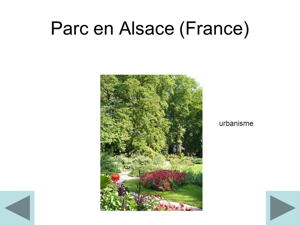 Parc en Alsace (France)