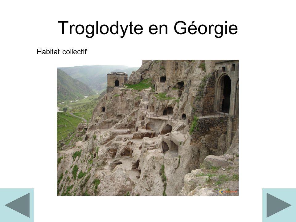 Troglodyte en Géorgie Habitat collectif