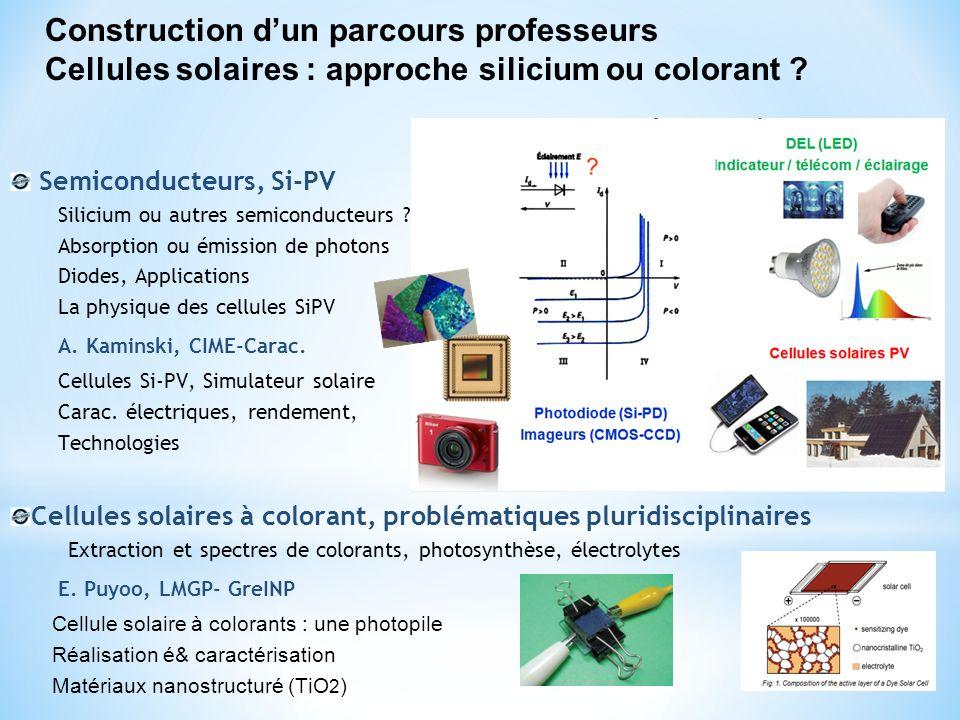 Construction d'un parcours professeurs Cellules solaires : approche silicium ou colorant