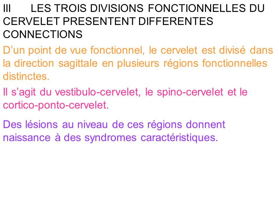 III LES TROIS DIVISIONS FONCTIONNELLES DU CERVELET PRESENTENT DIFFERENTES CONNECTIONS