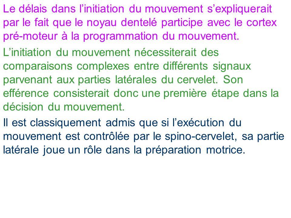 Le délais dans l'initiation du mouvement s'expliquerait par le fait que le noyau dentelé participe avec le cortex pré-moteur à la programmation du mouvement.