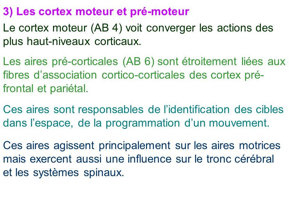3) Les cortex moteur et pré-moteur