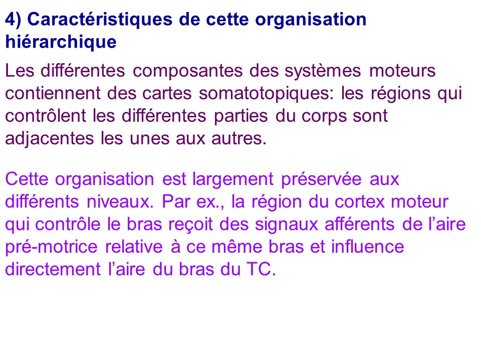 4) Caractéristiques de cette organisation hiérarchique